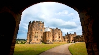 Early Payment Discount with Luxury Gold
