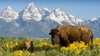 Kick off Labor Day Weekend with Insight